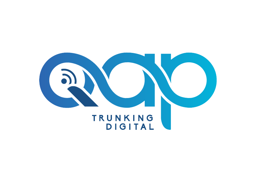 Logo QAP Ingenieria